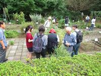 植物園公開