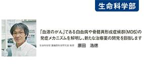 touyaku118_研究最前線