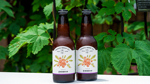TBSラジオ「森本毅郎・スタンバイ!」で東京薬科大学の酵母を利用したクラフトビールが紹介されました